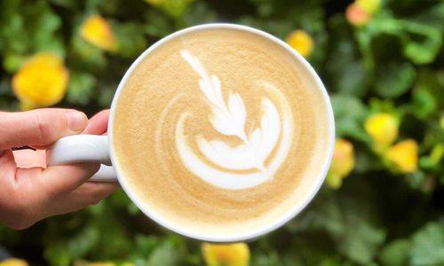 Joplin Greenhouse Coffee Shop