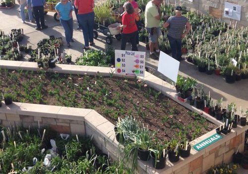 21st Annual Master Gardeners of Greene County Plant Sale