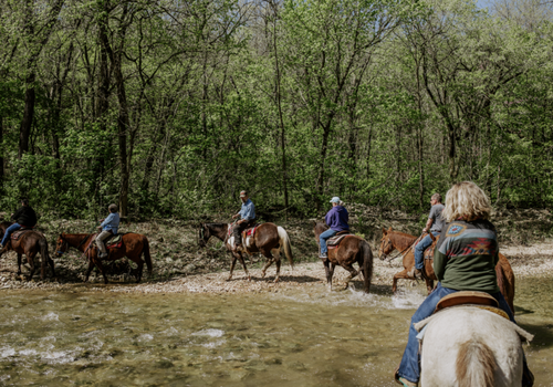 37 North Expeditions Horseback Riding & Winery