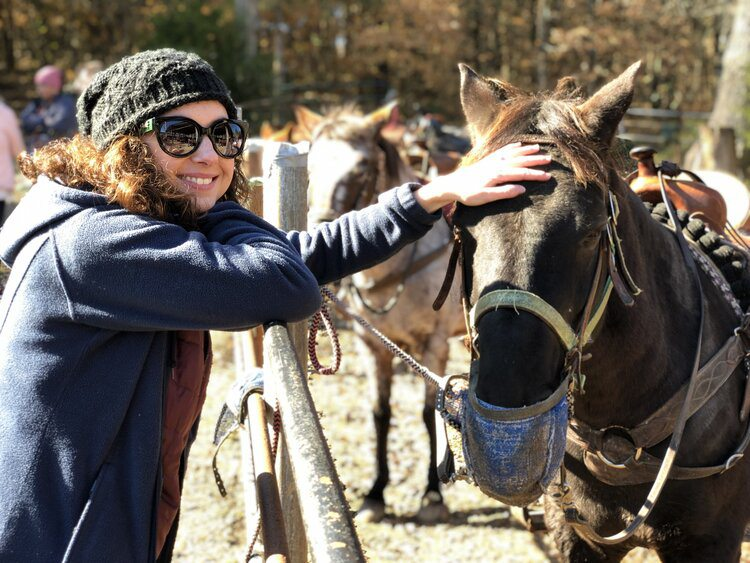 Horseback riding in Springfield, MO