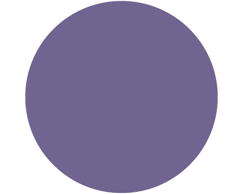 Curated - Purple