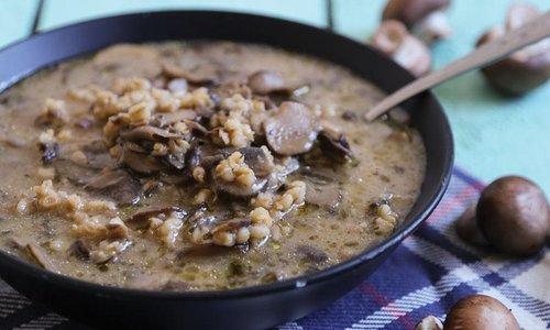 5 Best Mushroom Soups