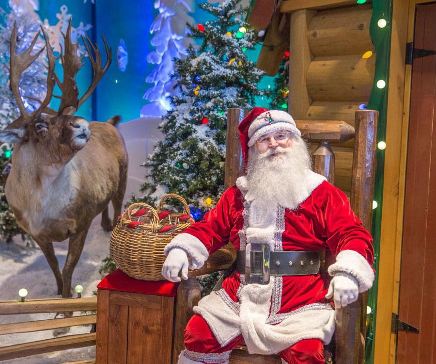 Sit on Santa's lap at Bass Pro Shops.
