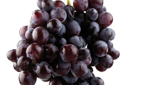 Hollister Grape & Fall Festival