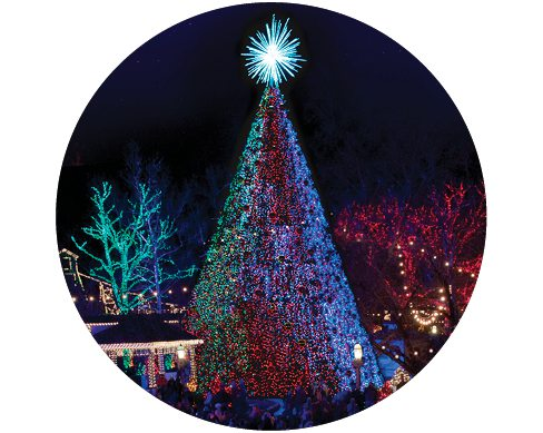 Christmas tree at Silver Dollar City's Christmas festival.