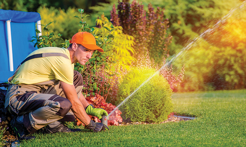 All About Irrigation and Sprinkler Systems
