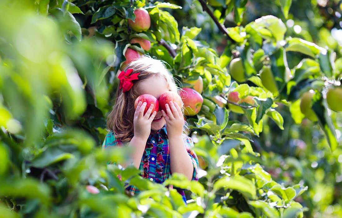 Little girl holding two apples over her eyes