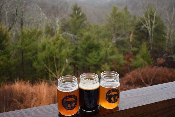 Bear Creek beer glasses
