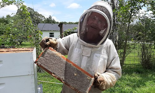 Man in beekeeping suit holding a beehive