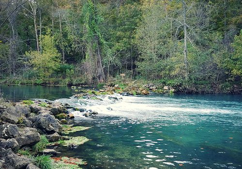 Bennett Spring on the Niangua River in Missouri