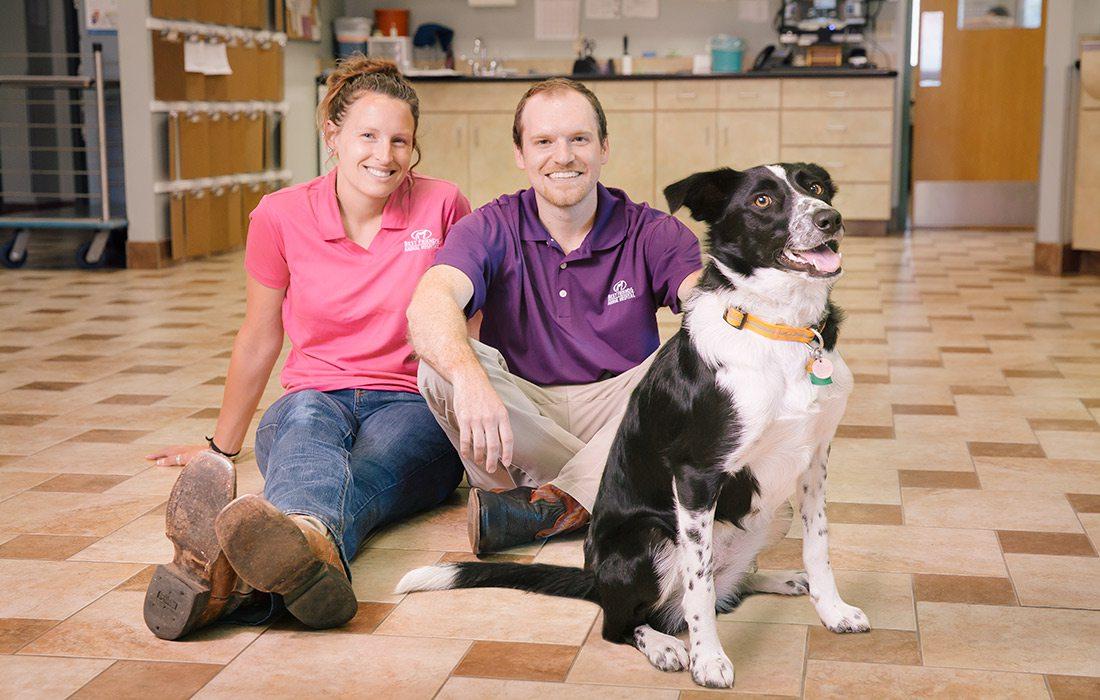 Best Friends Animal Hospital Ozark Missouri
