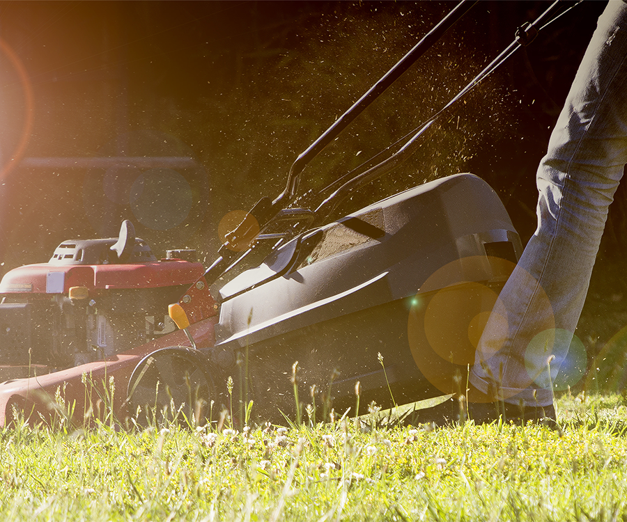 Mowing keeps lawns looking crisp, but in the summer heat, let your grass get a little longer to give it some shade.