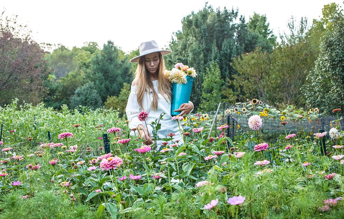 Life at Blossom Thyme Hill Flower Farm