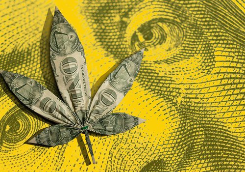 Business of Pot banner image