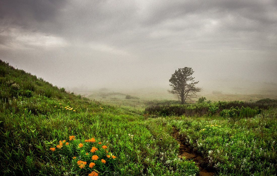 Taton Tubbs photo of Coronado Heights