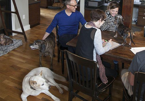 Creating Culture with Canines