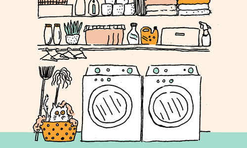 Love Your Laundry: Organizational and Design Hacks