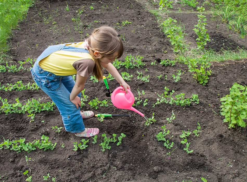 Discovery Garden Montessori School, Springfield, MO