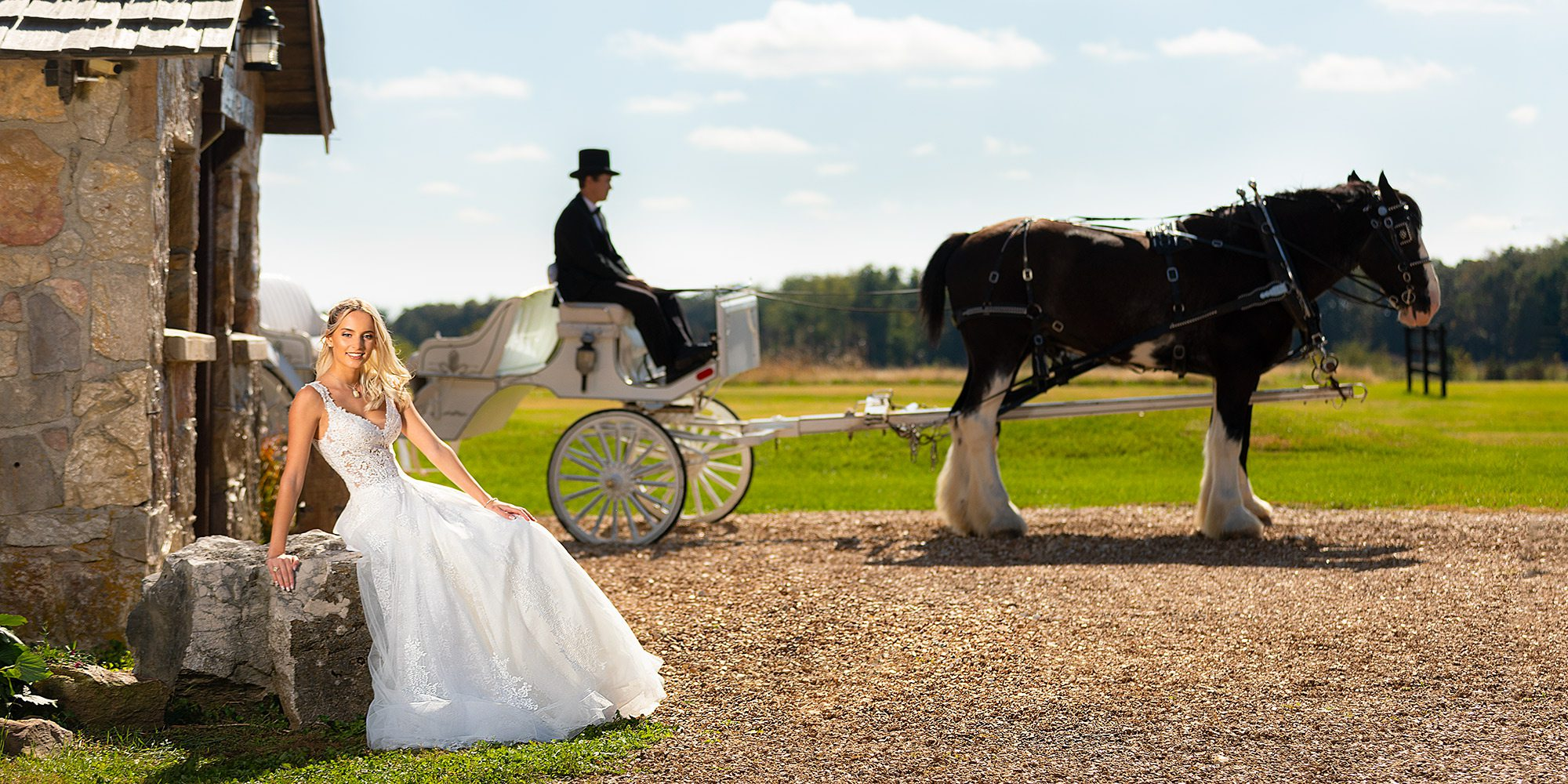 Alita gown with lace bodice with a horse and buggy by Shires For Hire