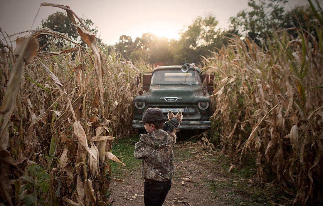 child in a corn maze