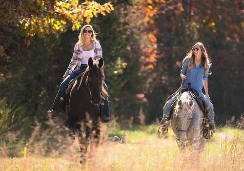 Horseback Riding and Winery