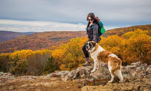 Woman and dog at overlook on Mina Sauk Falls Trail in Missouri