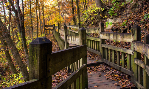 Southwest Missouri trail in the fall