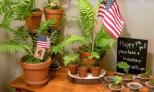 fern party favors for friends on 4th of july