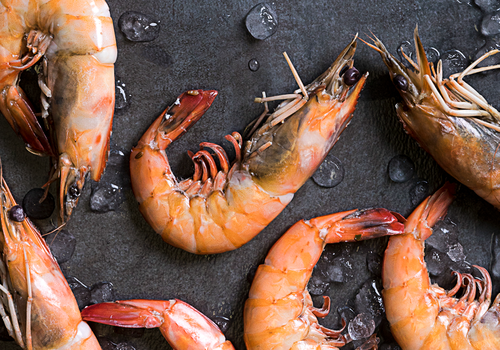 Fresh Catch: Your Guide to Local Seafood