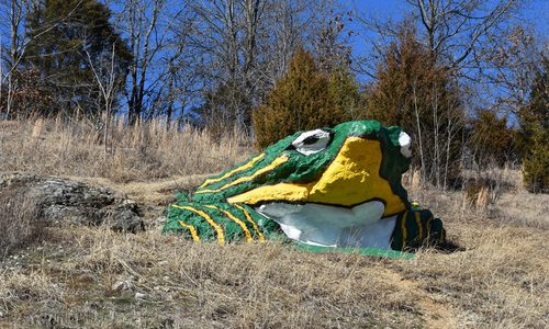 Frog Rock in Waynesville, MO