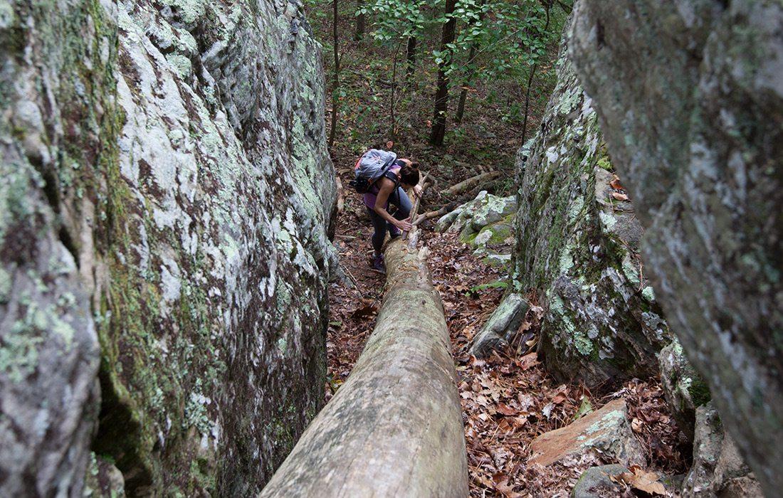 Big Piney Trail in Missouri