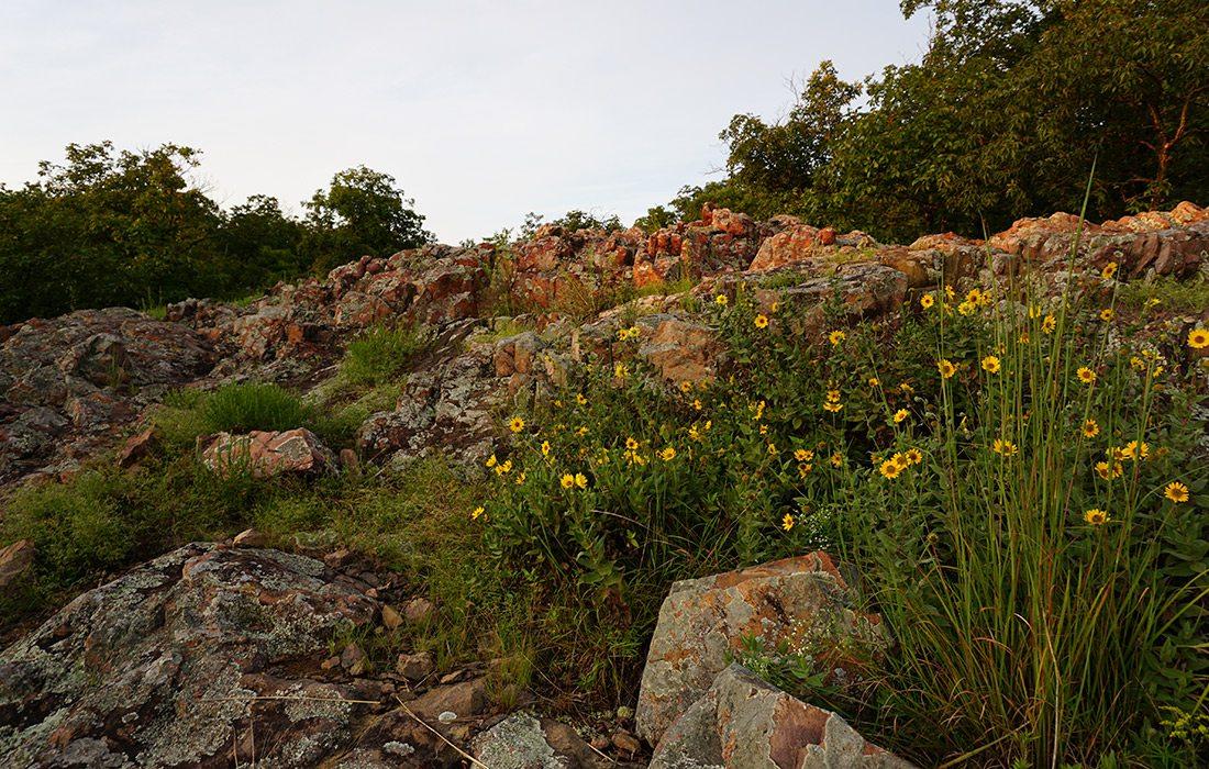 Mina Sauk Falls Trail in Missouri
