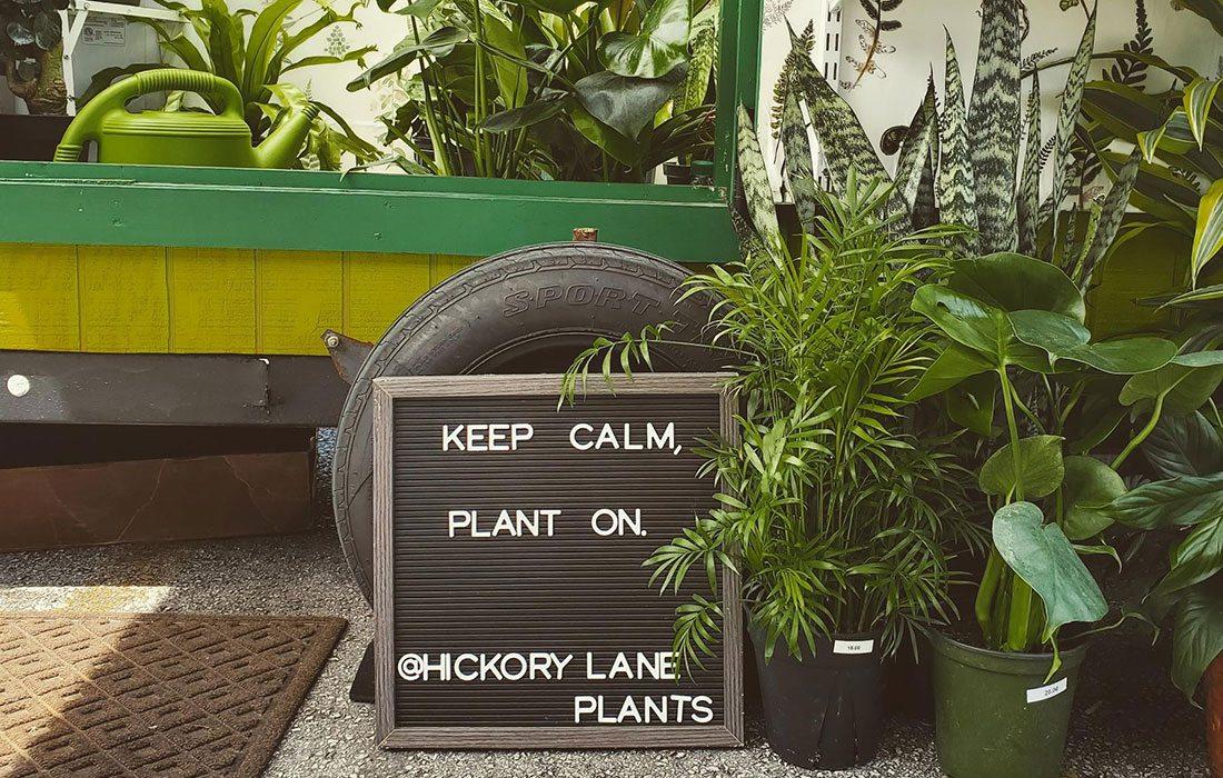 Hickory Lanes Plants