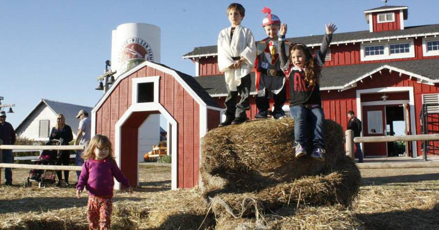 red barn and kids and hay