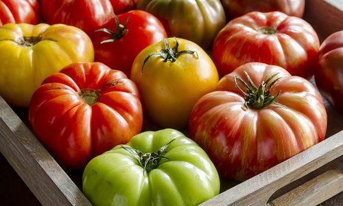 Heirloom Tomato Dishes Around 417-land