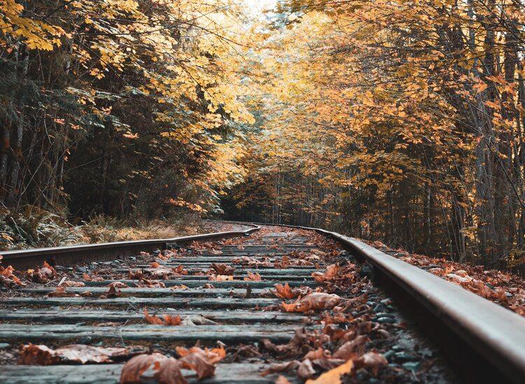 Hike and train ride in Ozark, MO
