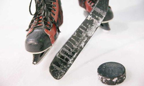 Hockey Springfield-Greene County Park Board