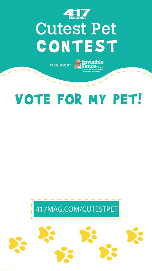 cutest pet 2020 instagram story marketing materials paw prints
