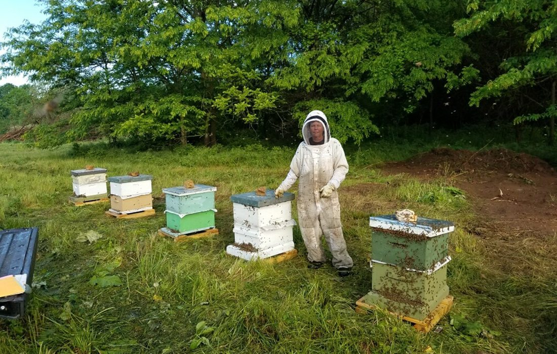 John Moore standing with his beehives