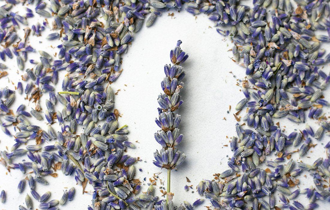 Lavender Lemonade Recipe