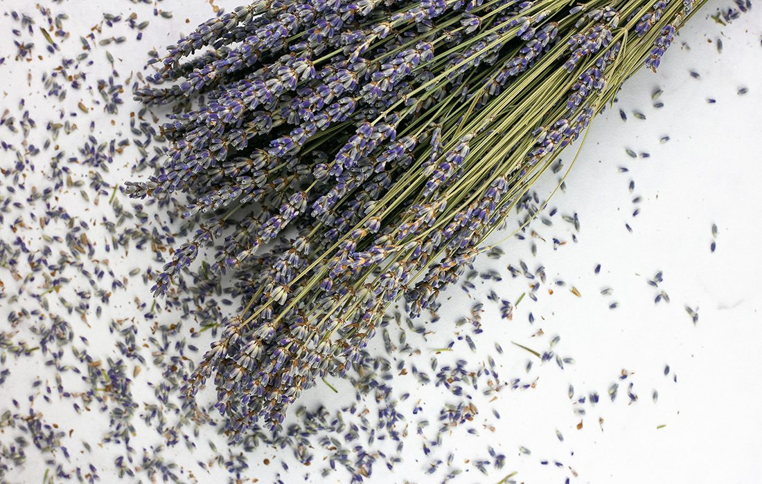 Lavender Pasta Recipe