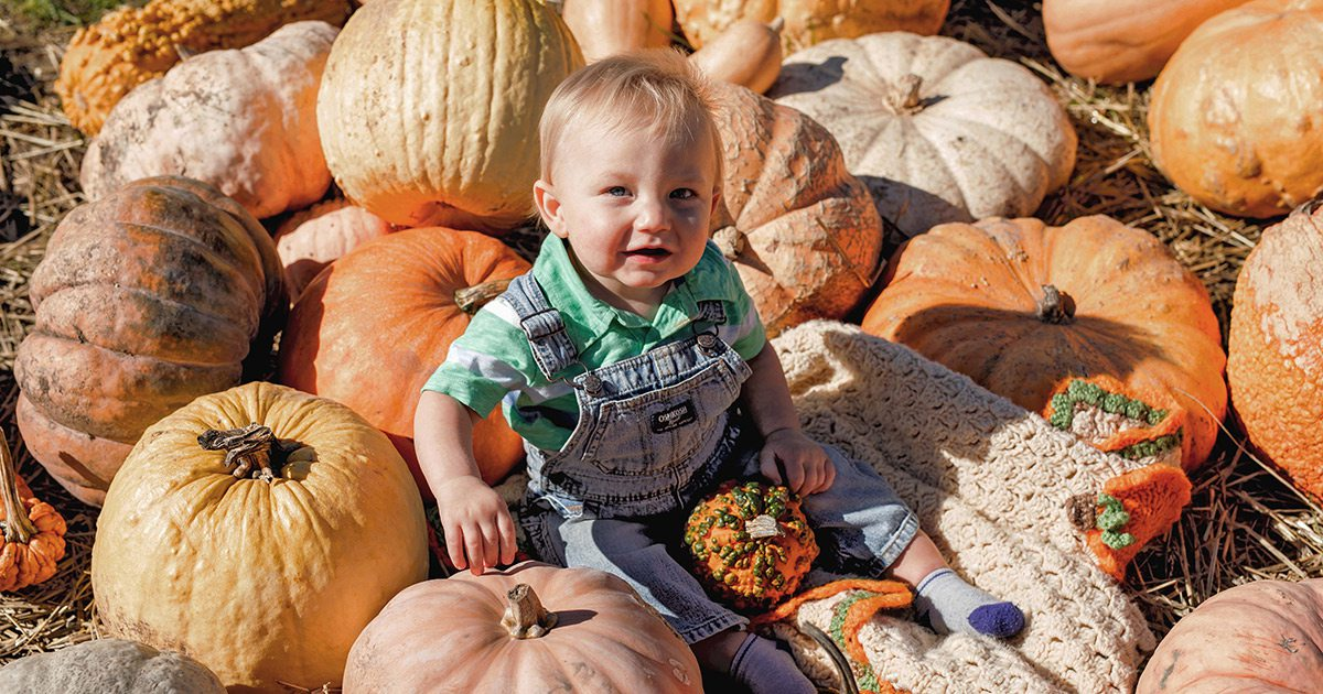 Little boy sitting on a pile of pumpkins in Clay County, Missouri
