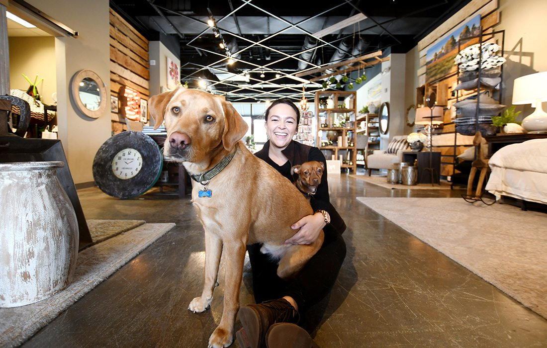 Zeke, a 1.5-year-old lab and Kallie, a 2-year-old Chihuahua dachshund mix at Ellecor Design & Gifts