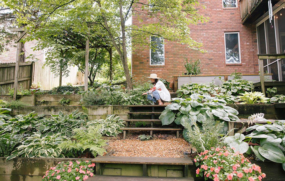 Hillside home hosta garden in Springfield MO