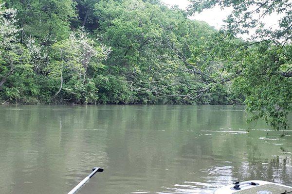 Finley River paddling
