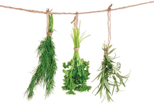 craft your own herbal remedies in Seymour, MO