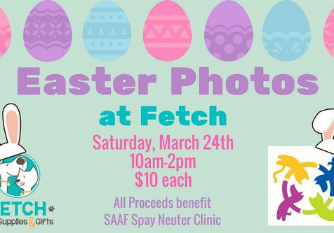 Pet Photos with the Easter Bunny at Fetch