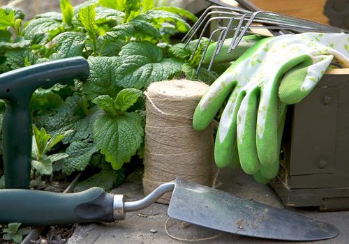 Gardening Class in Springfield MO