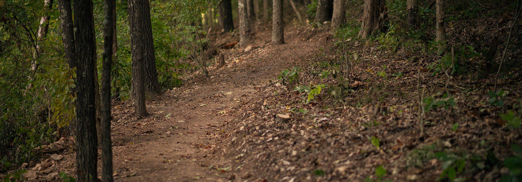 Trail photp