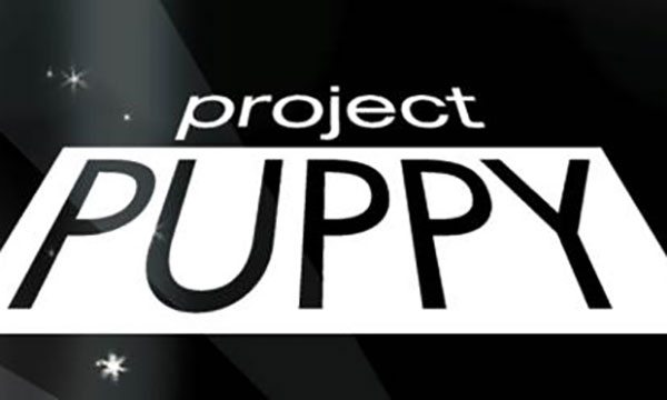 Raising Money for Puppies in Springfield, MO